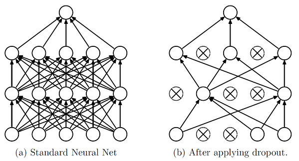 A standard neural net before and after applying dropout