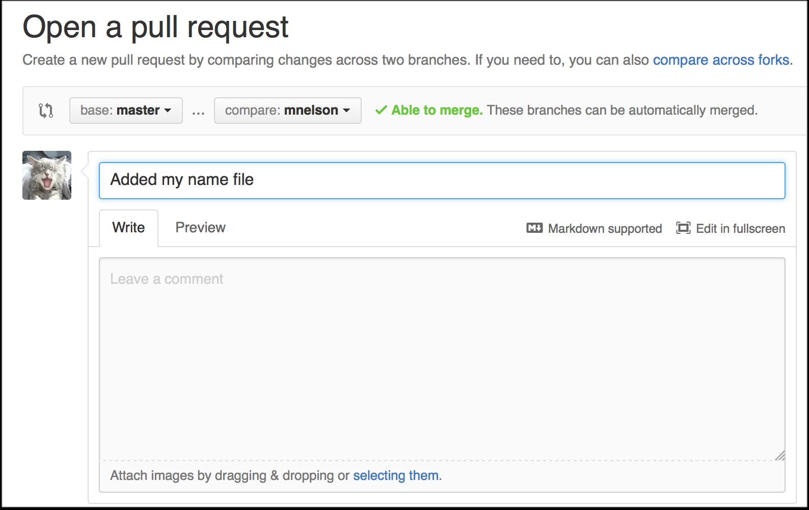 Git_101_Screenshot_4.png
