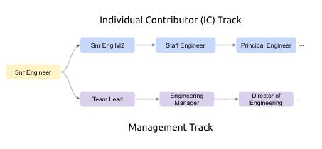 Individual Contributor Track (Senior Eng to Senior Eng 2 to Staff Engineer to Principle Engineer) vs Management Track (Senior Engineer to Team Lead to Engineering Manager to Director of Engineering)